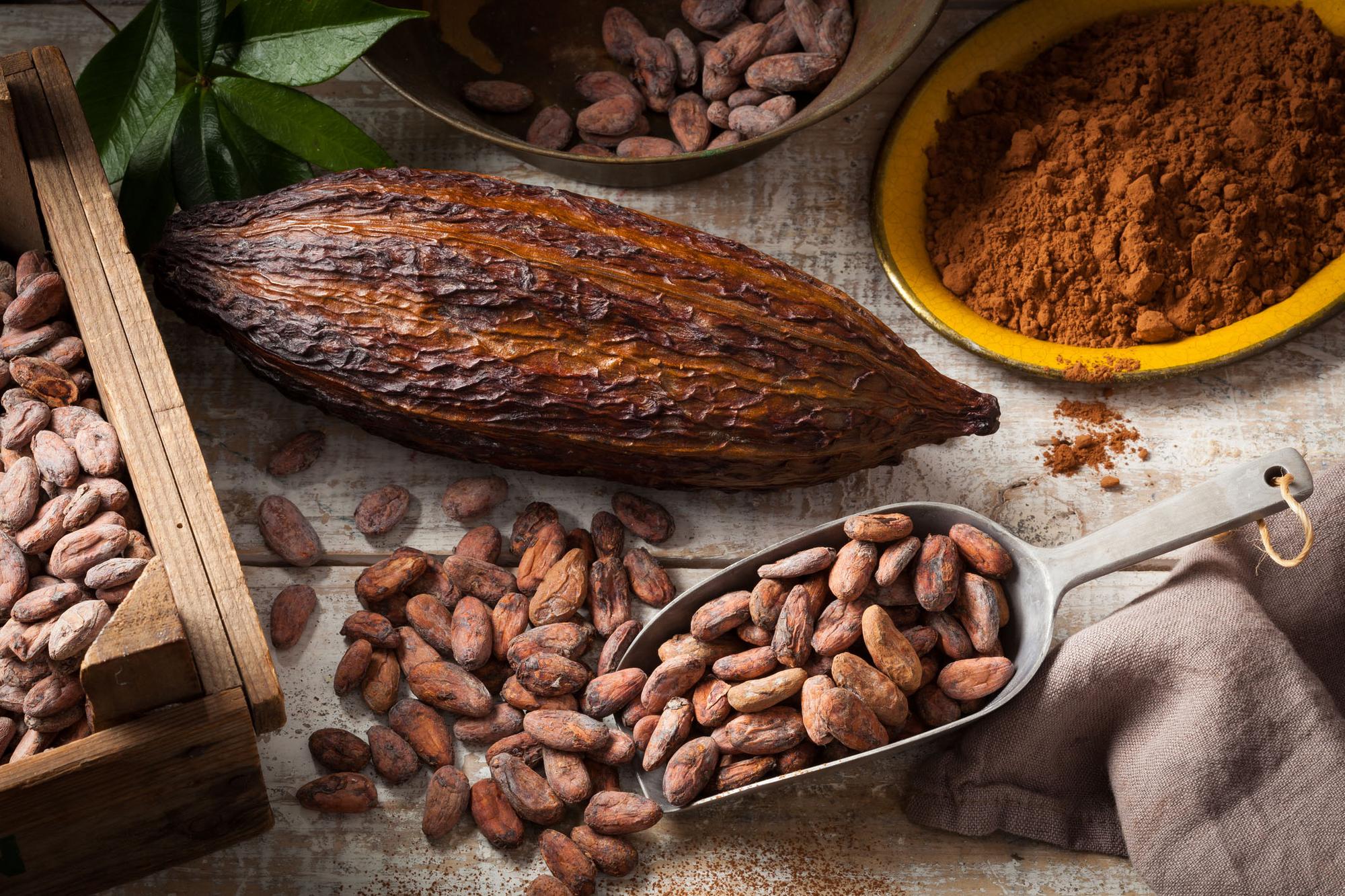 Alimentos que fazem bem para a pele: Cacau (Fonte: AC Farme)