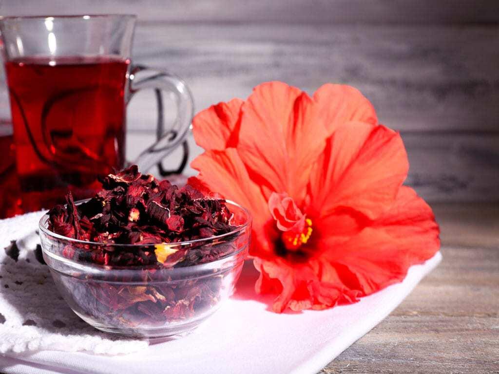 Benefícios do chá de hibisco (Fonte: Es Hoje)